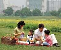 Asians picnicing
