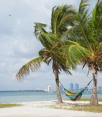 Cityc beach